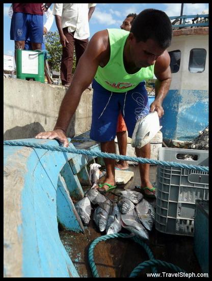 Retour de pêche à Barreirinhas