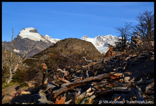 Bois sec, neige, glacier et ciel bleu à El Chalten, en Patagonie
