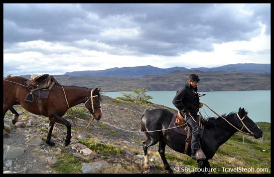 Passages de cheveux devant le Lago Nordenskjöld - Patagonie